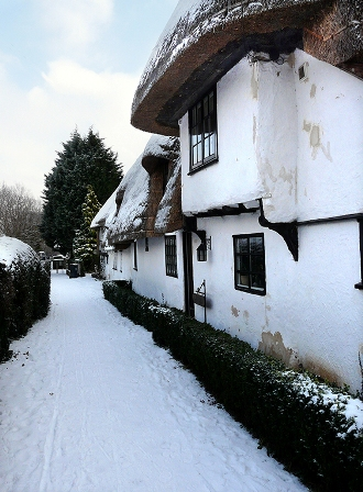 the row in winter