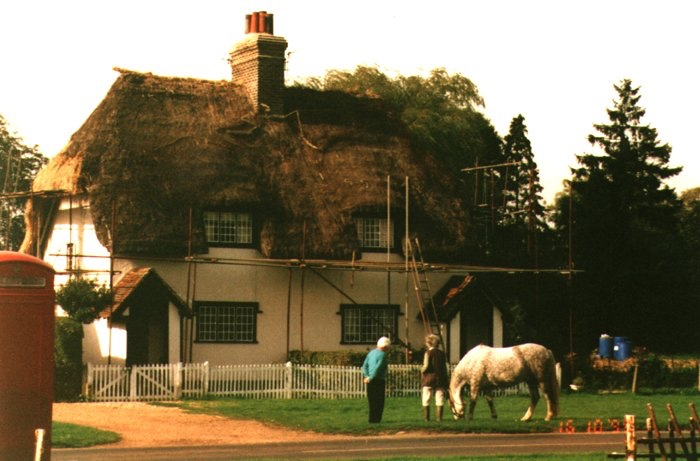 suckling cottage being rethatched