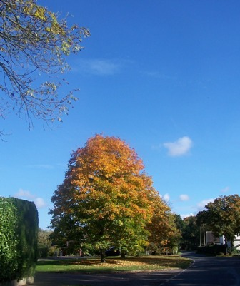Chickney Road in the Autumn